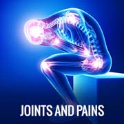 JOINTS AND PAINS
