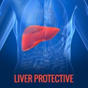 LIVER PROTECTIVE